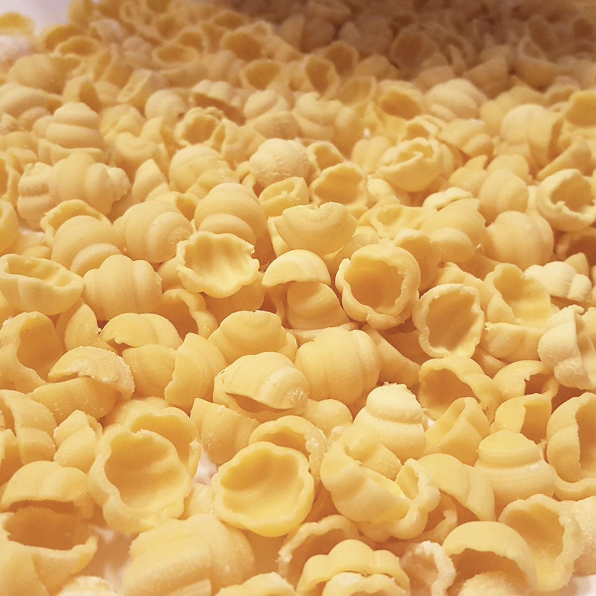 162-Gnocchi-Napoletani_pasta_